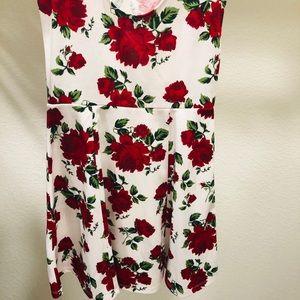 Rose print skater dress